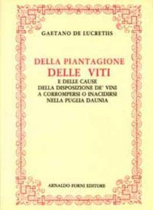 Immagine di Della piantagione delle viti e dei vini nella Puglia