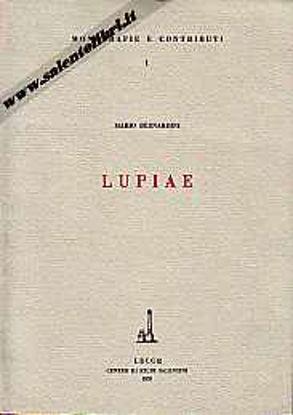 Immagine di Lupiae (I ritrovamenti archeologici di Lecce)
