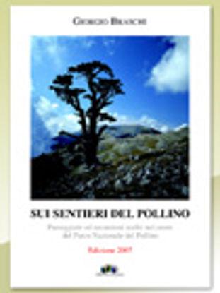 Immagine di Sui sentieri del Pollino. Passeggiate ed escursioni scelte nel cuore del Parco Nazionale del Pollino