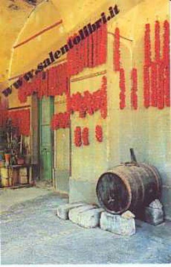 Immagine di CARTOLINA 10 X 17 VILLAGGIO RESTA - Nardò