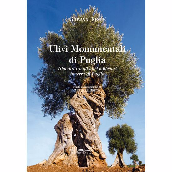 Immagine di Monumental Olives of Apulia. A journey through ancient olive groves in Apulia.