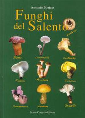 Immagine di Funghi del Salento